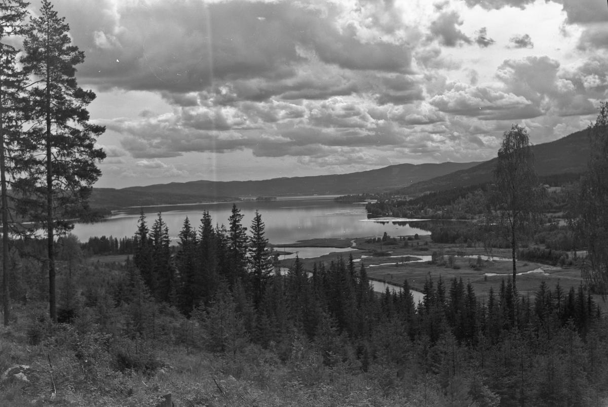Plantet skog. Ved Hurdalsjøen. 24.06.2013: Bildet viser nordenden av Hurdalssjøen og elvedeltaet i Knaimyra. Bildet er tatt frå Minneåsvegen. Skrevet av: Arvid Garsjømoen