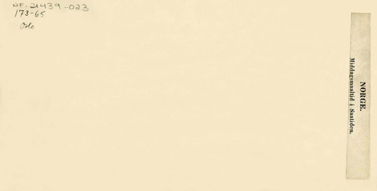 """Antakelig fra Tokheim ved Sørfjorden i Hardanger. Stereoskopi fra perioden 1864-1880. """"Middagsmaaltid i Saatiden"""". Tre personer sitter og spiser på bakken i et fjord- og fjellandskap."""
