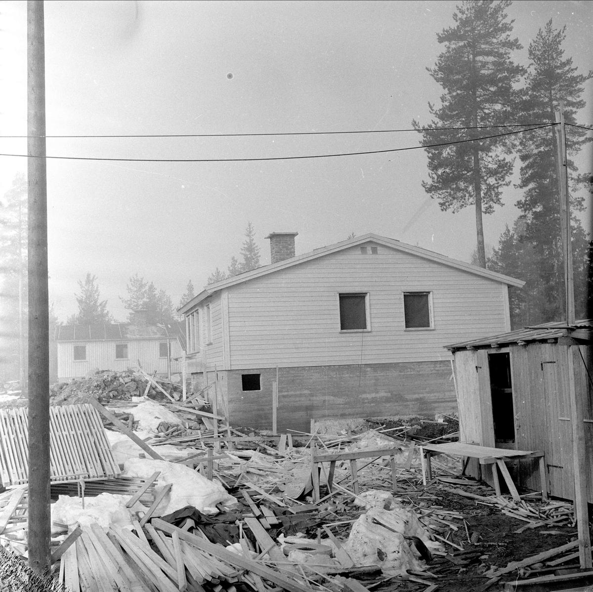 Hus i skogholt, ukjent sted, mars, 1959.