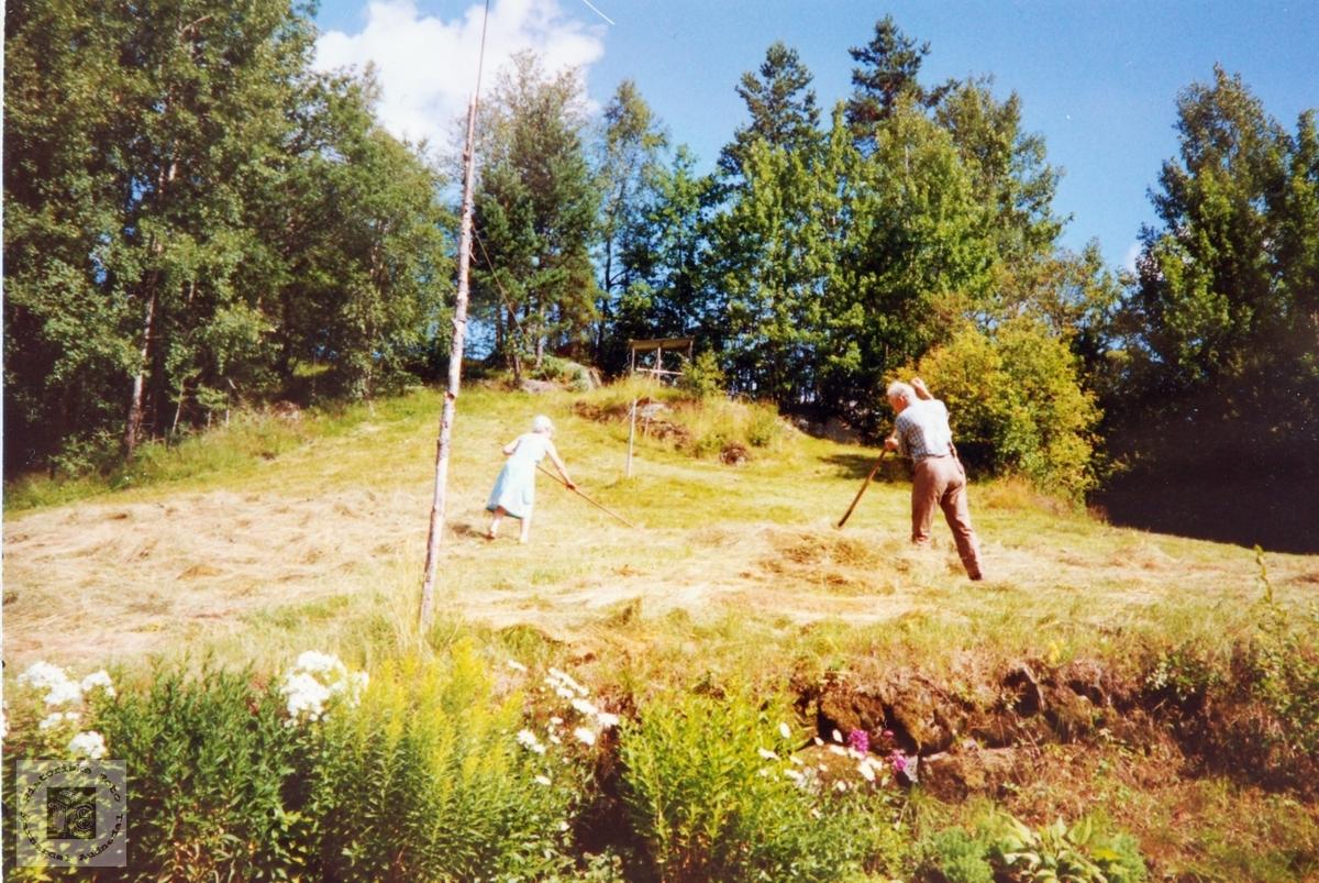 Arbeid med høyet Der Veste på Sveindal i Audnedal.