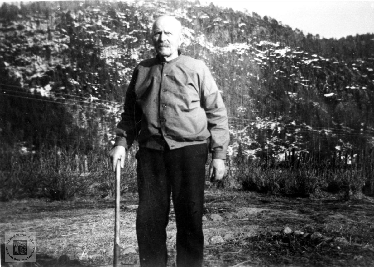 Portrett av Ola d.y. Hesså, Bjelland.
