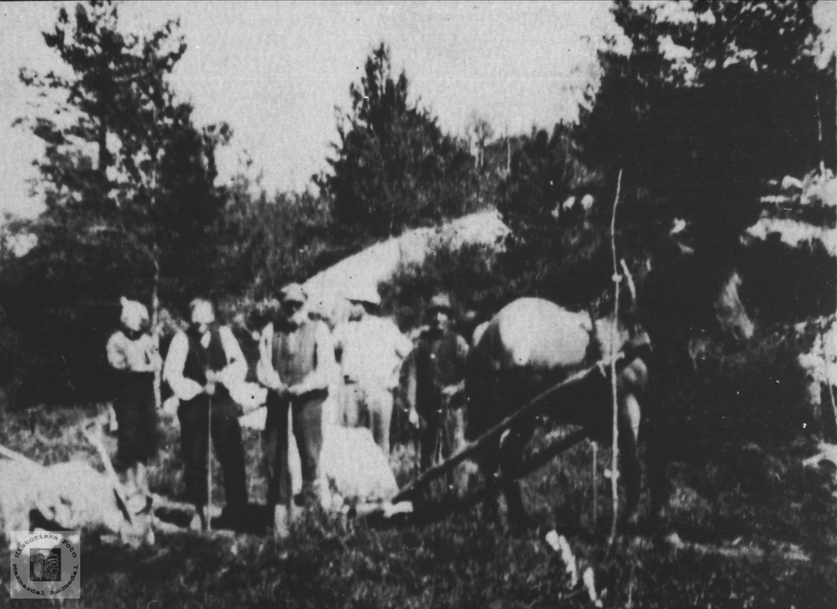 Vegbygging med hest og handredskap, Ugland Laudal.