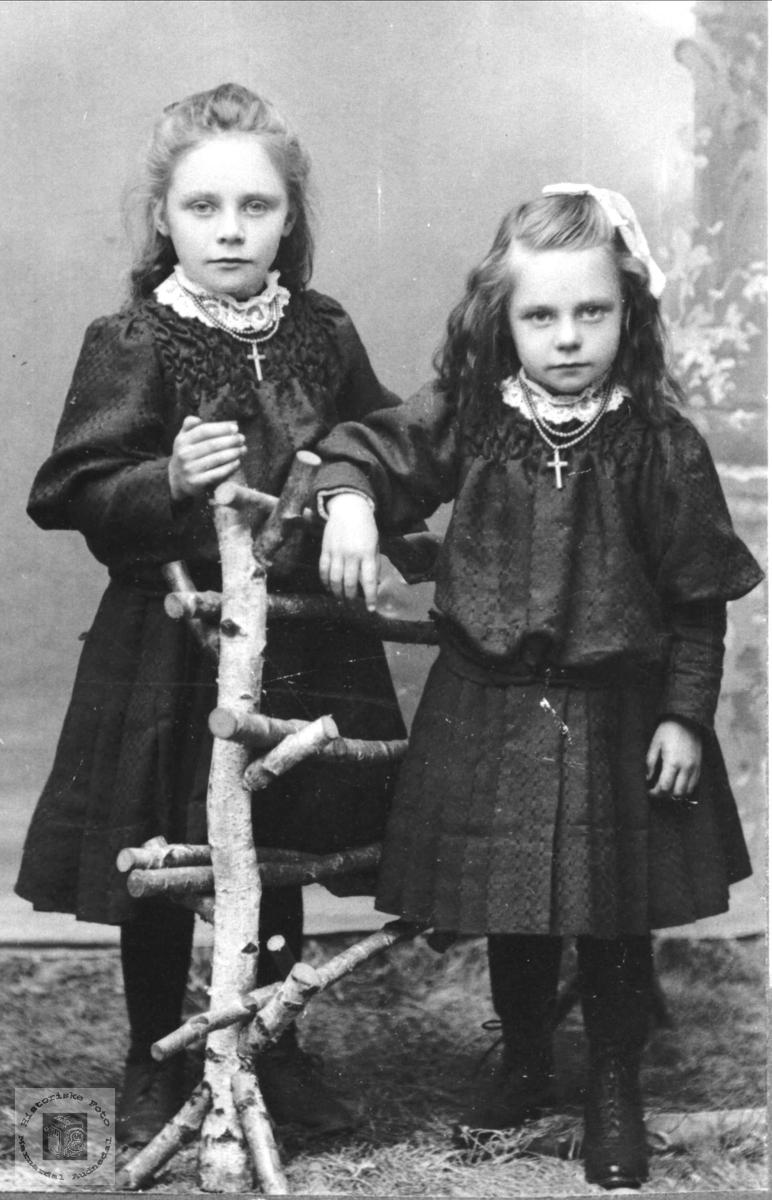 Søstrene Anna og Ragna Manneråk, Øyslebø.