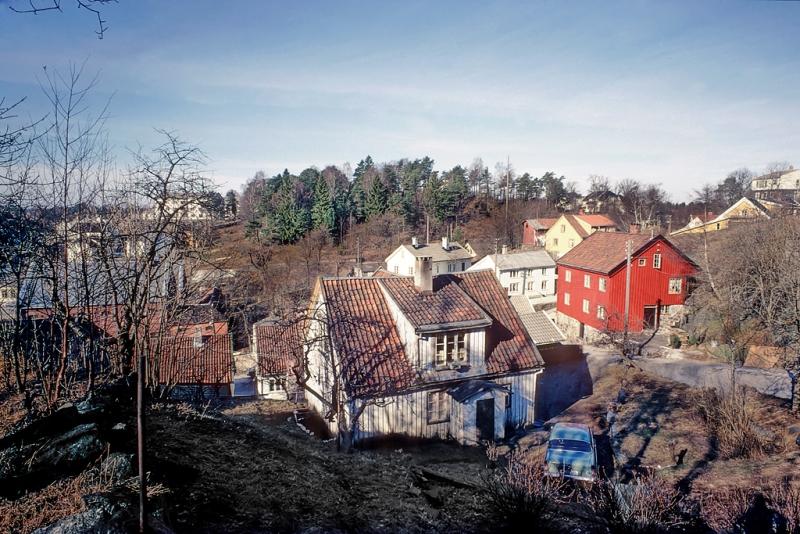 Forstadsbebyggelse. Hus og gate.  Skog i bakgrunnen.
