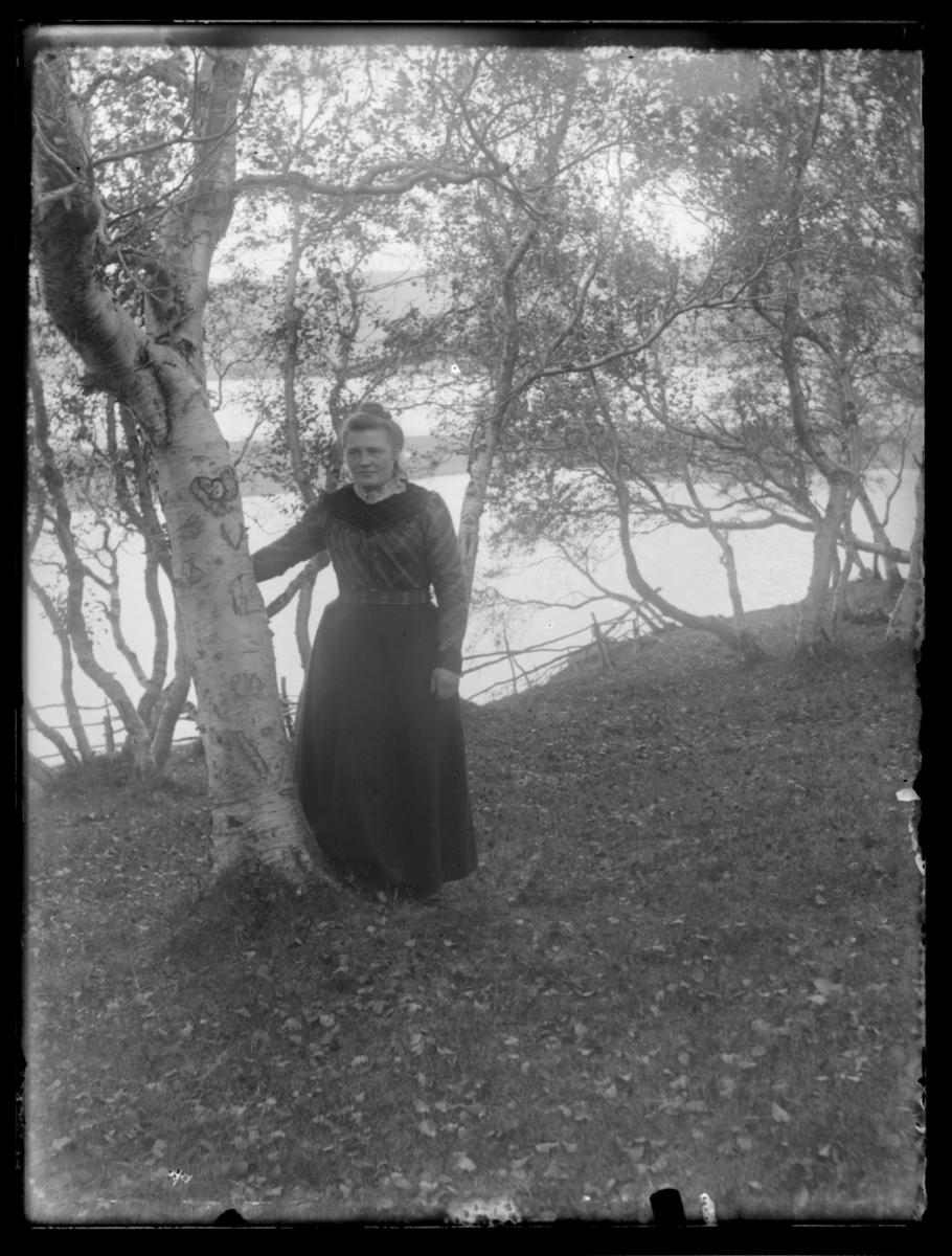 Anna Brekkan ved ei bjørk