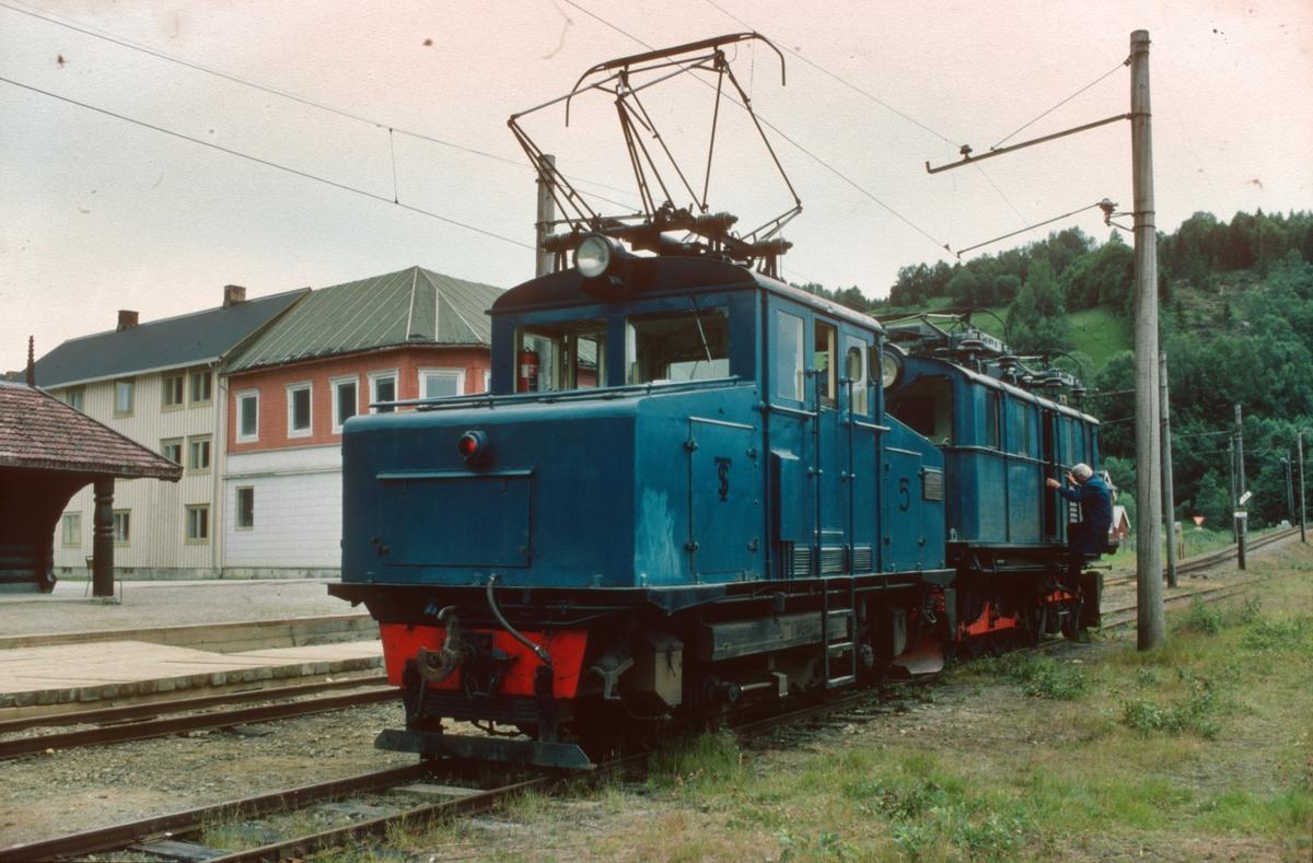 Salvesen & Thams lokomotiver nr. 5 (NEBB) og 8 (ASEA).