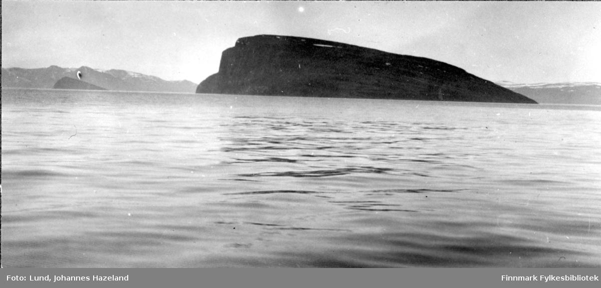 Øya Håja i Sørøysundet