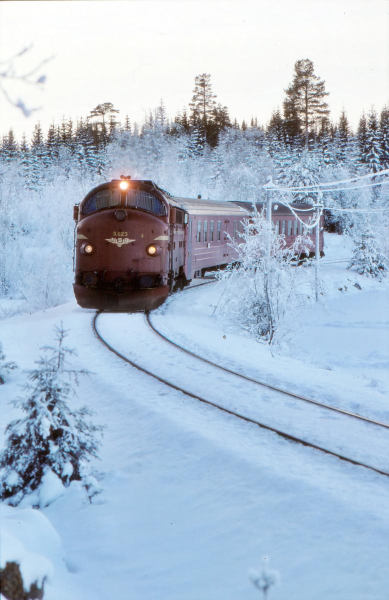 Persontog fra Fagernes til Oslo S under innkjøring til Trevatn stasjon.