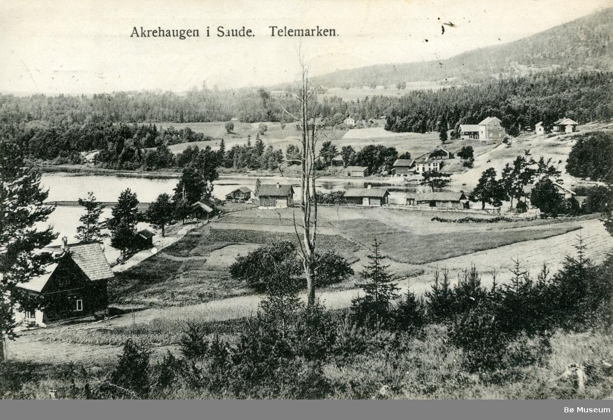 Akrehaugen i Saude. Telemarken.