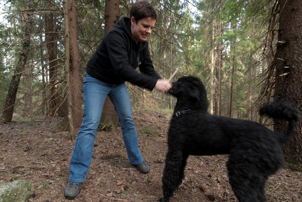 Hunden Pedro leker med en av sine eiere på tur.