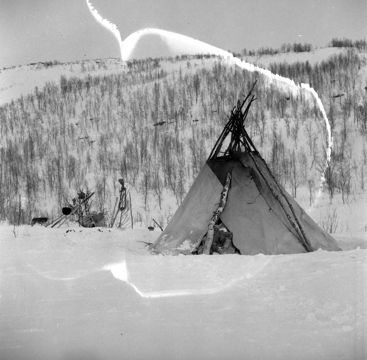 Samisk lavvo fra Målselv