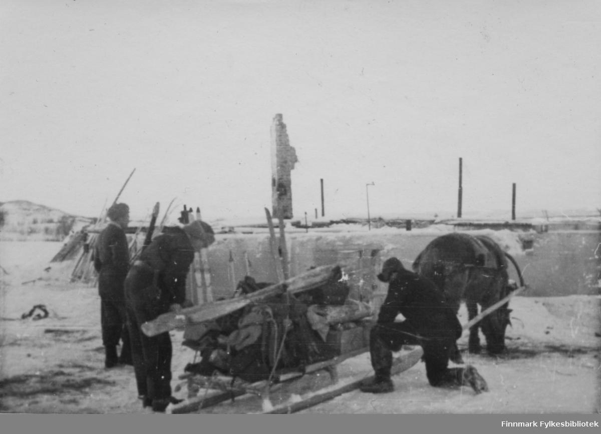 """Børselv 1945. Materialer kjøres fram med hest for bygging av tak over kjelleren til det nedbrente skoleinternatet, slik at tredje tropp fikk et sted å bo  Bildeserien """"Frigjøringen av Finnmark 1944-45"""" viser et unikt materiale fotografert av soldater i Den Norske Brigade, 2. Bergkompani under deres oppdrag """"Frigjøringen av Finnmark"""" som kom i stand under dekknavn """"Øvelse Crofter"""". Fakta rundt dette bildematerialet illustrerer iflg. vår informant, George Bratli: """"2.Bergkompani, tilhørende Den Norske Brigade i Skottland,  reiste fra Skottland 30. oktober 1944 med krysseren «Berwick» til Scapa Flow på Orkenøyene for å slutte seg til en større konvoi som skulle være med til Norge. Om bord på andre skip var det mange russiske krigsfanger som hadde vært på tysk side og som nå ble sendt hjem.  2.Bergkompani forlot havn 1.november 1944 og kom til Murmansk, Sovjetunionen, 6. november 1944.  De ble her lastet om og fraktet til Petsamo, Sovjetunionen, hvor de ankommer 11.november 1944.  Kompaniet reiser så til Sandnes utenfor Kirkenes og blir forlagt der frem til 26.november 1944. De flytter så videre til Skipparggura.  Den 29.november reiser deler an kompaniet til Rustefielbma og Smalfjord og noen drar opp på Ifjordfjellet.   17. desember ankommer resten av kompaniet til Smalfjord. 30.desember blir en avdeling sendt til Hopseide og 8. januar 1945 blir noen sendt til Kunes. Den 14. januar er kompaniet delt og ligger i Kunes, Kjæs, Børselv, Hopseide og Smalfjord. 5. februar 1945 blir 3.tropp sendt over Porsangerfjorden for å operere i Olderfjorden. Her var de i kamp og hadde tap i  Billefjord og Sortvik. 8.mars 1945 kom noen til Renøy og 12. mars kom første del av kompaniet til Brennelv. 7.mai begynte kompaniet å bygge ny kai i Hambukt. 19. mai ble de som hadde falt begravd i Lakselv. 8. juni ble kompaniet flyttet fra Brennelv til Tromsø for så å bli sendt videre til Mo I Rana 16.juni."""""""