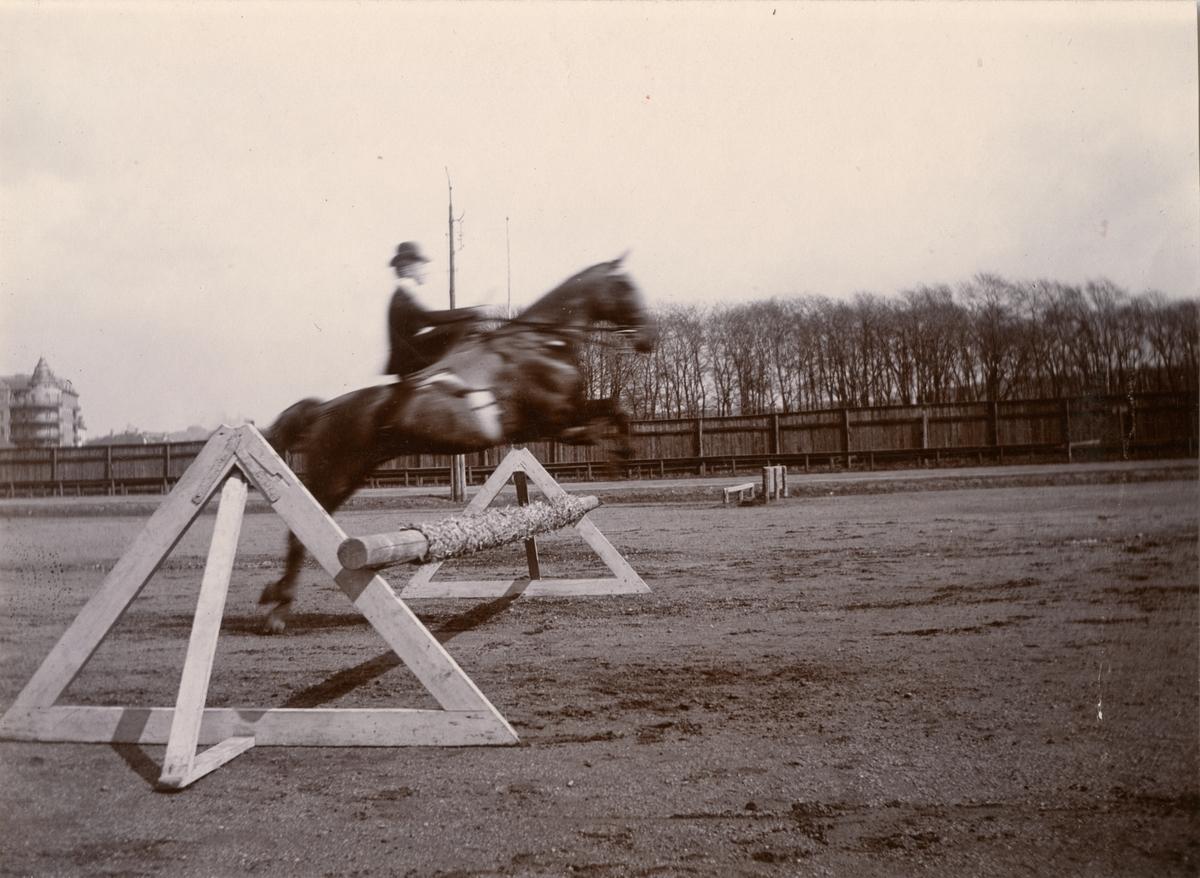 Gertrud Magnus (gift Trägårdh 1906) till häst.