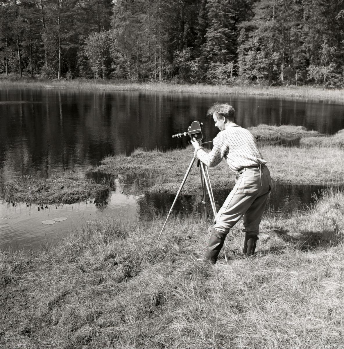 En man filmar smålommar vid Lösketjärn, juli 1962.