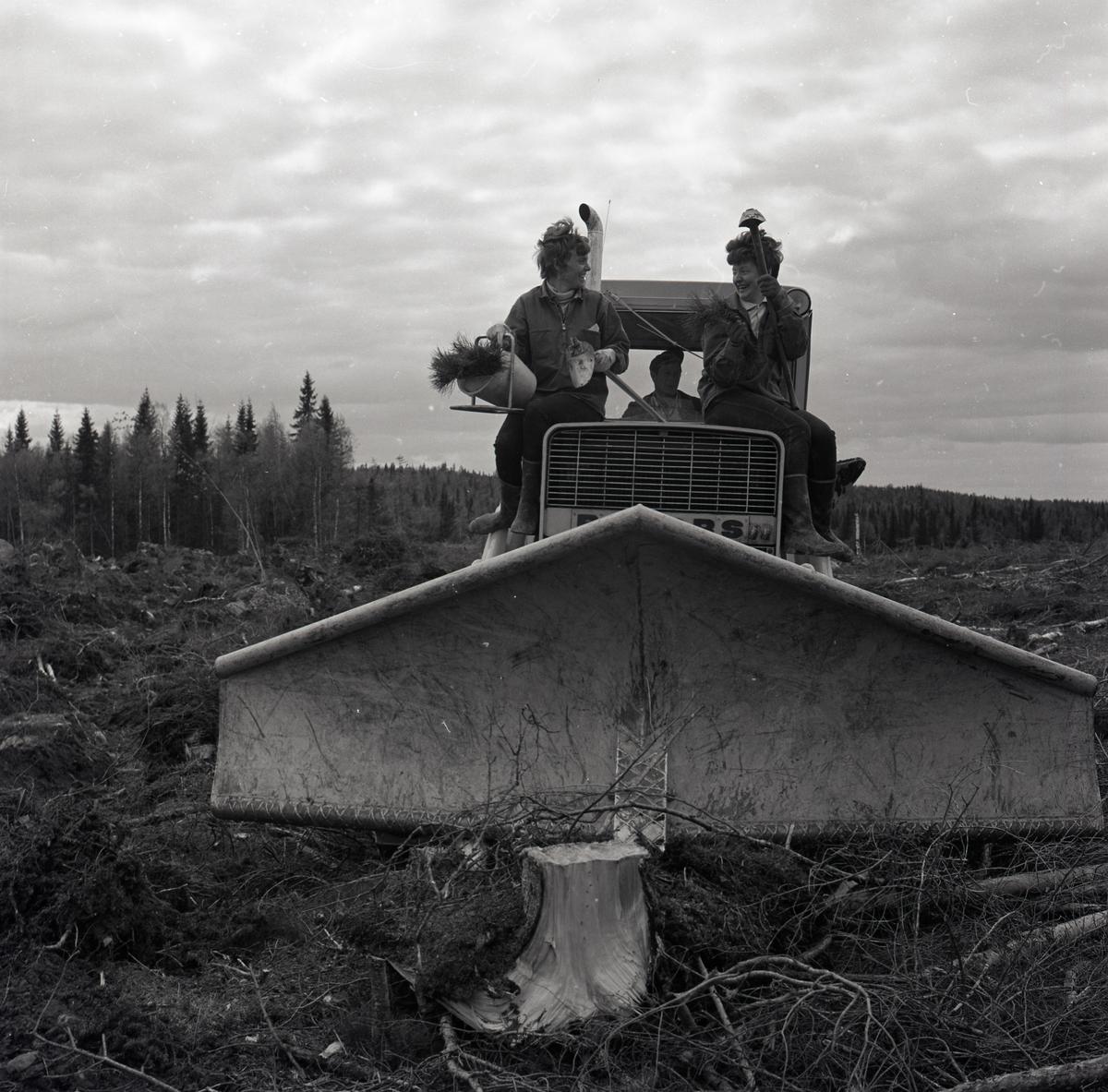 Två kinnor sitter på en skogsplog, 1969. I händerna håller de diverse redskap.