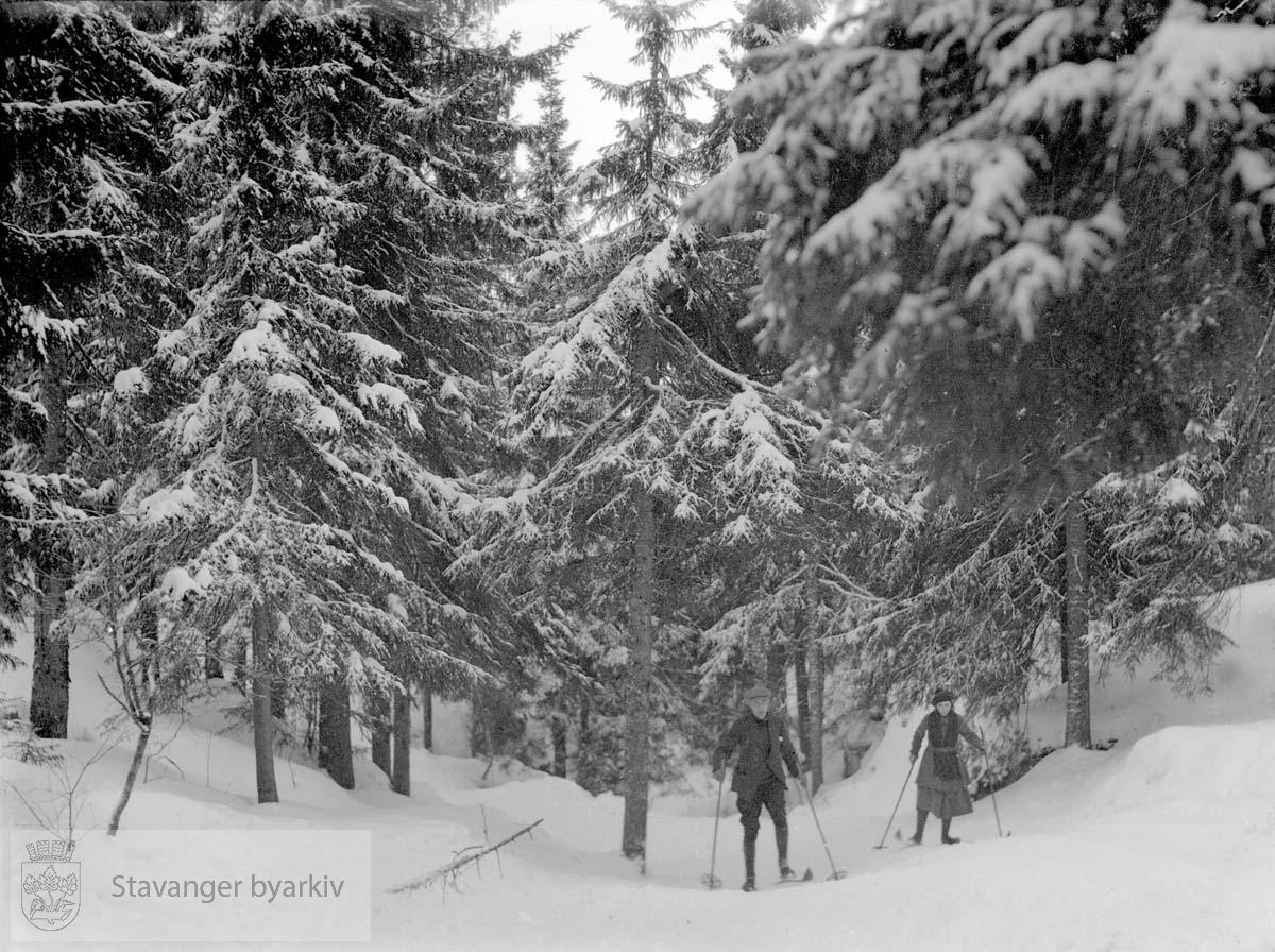 Skitur i skogen