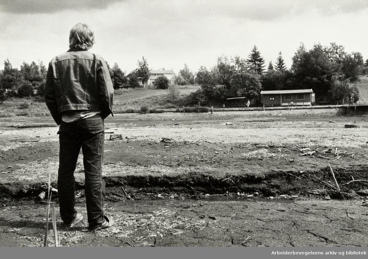 Holmendammen. August 1980