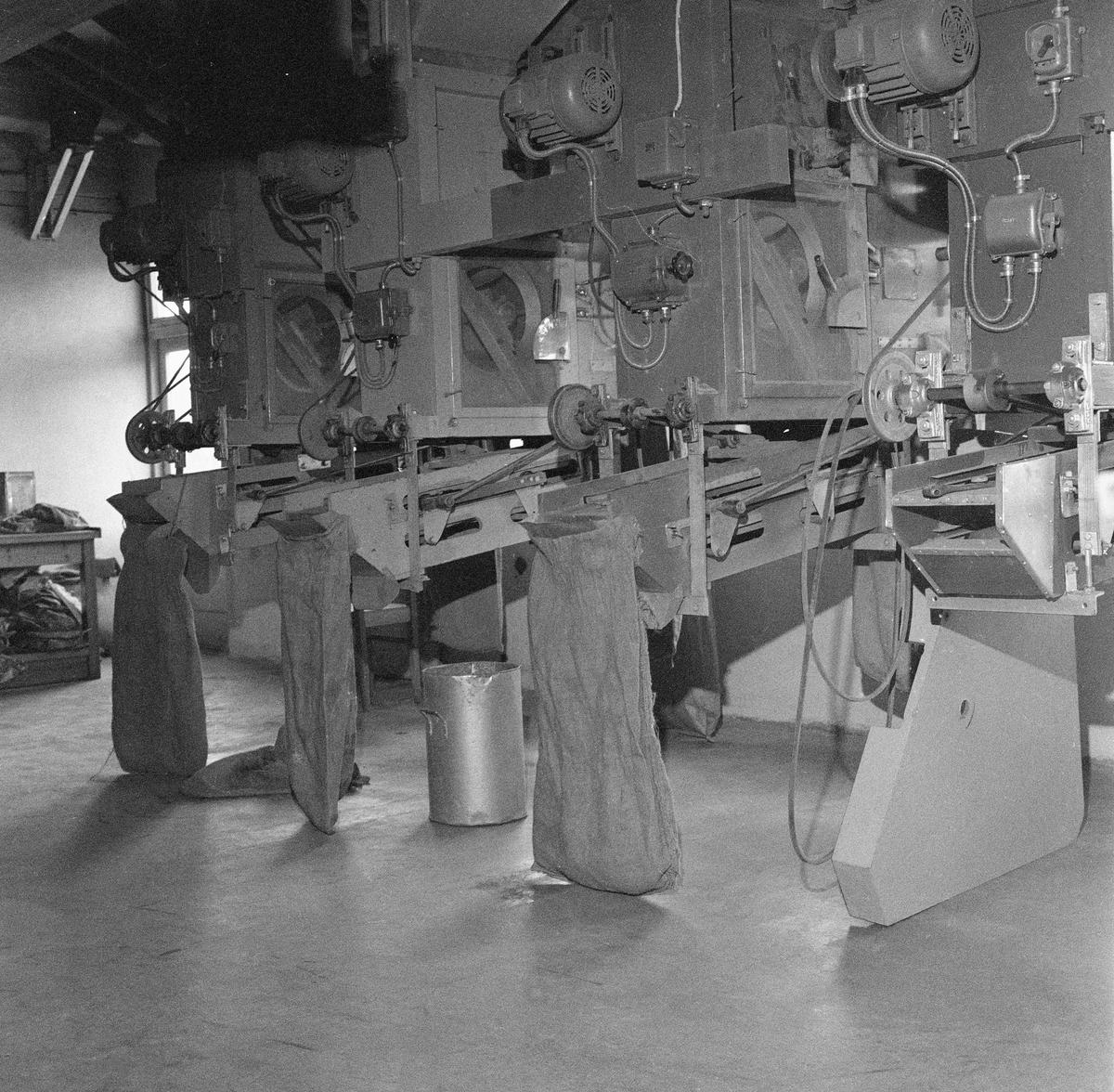 Interiør fra Statens skogfrøverk – seinere Det norske Skogfrøverk – på Hamar. Frøverksbygningen ble innviet i 1953, og den ble da ansett for å romme verdens største produksjonsanlegg for skogfrø.  Dette fotografiet er sannsynligvis tatt om lag ti år seinere. Motivet er antakelig rensemaskiner, alle drevet av separate elektromotorer.