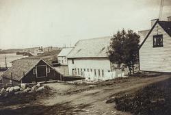Smedasundet sett mot vest, 1938.