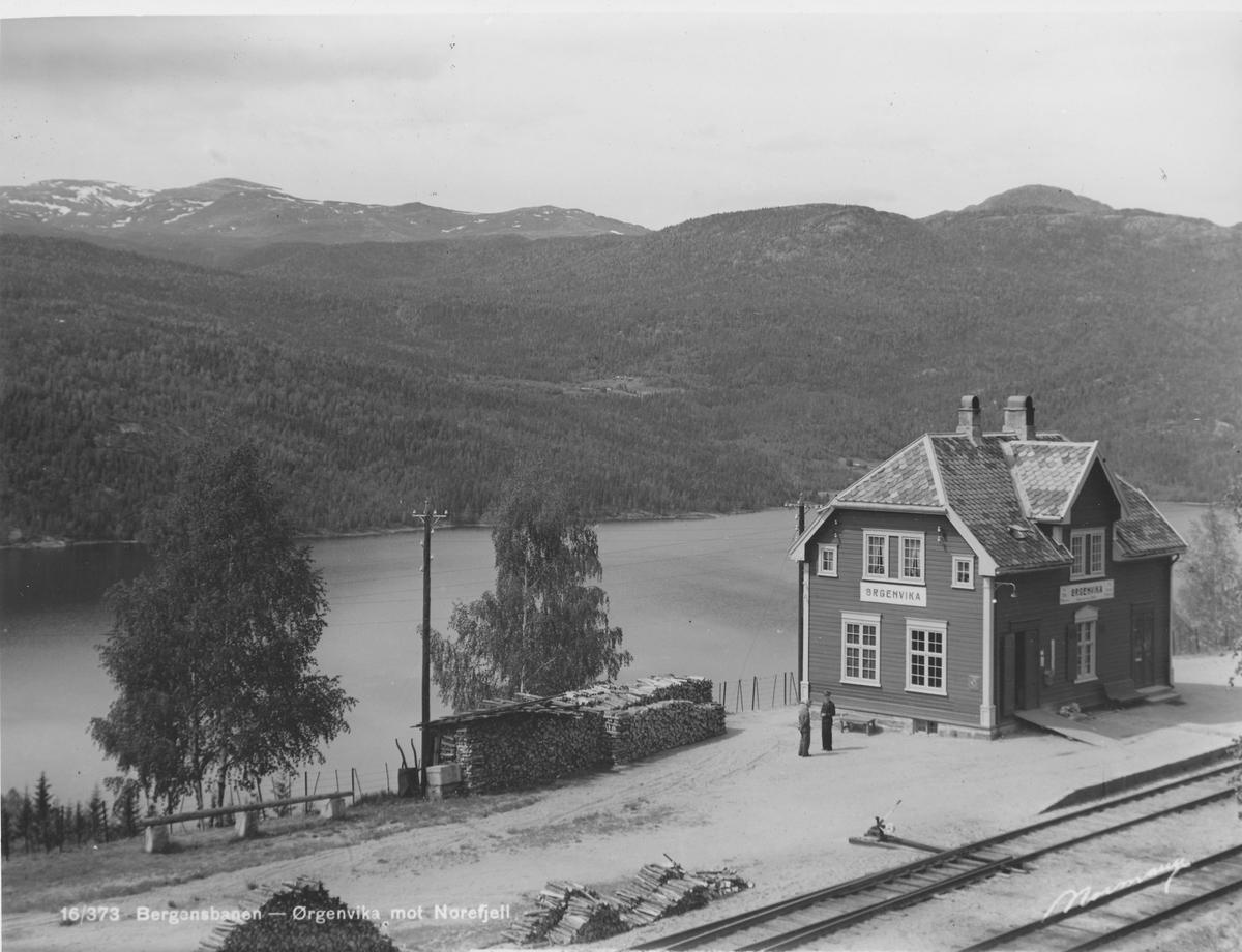 Ørgenvika stasjon på Bergensbanen