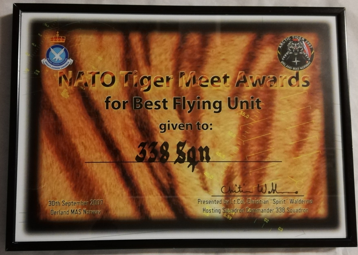 NATO Tiger Meet Awards for Best Flying Unit given to 338 Sqn