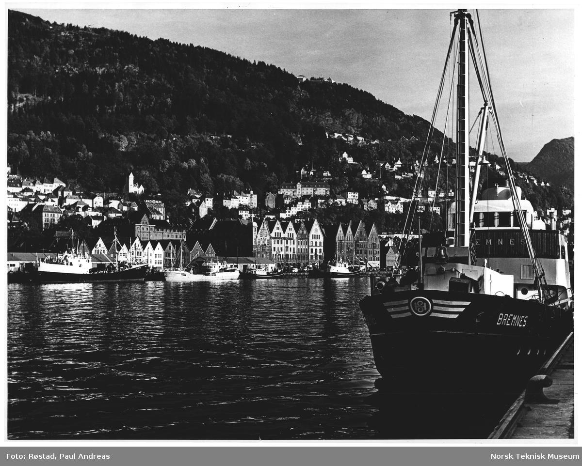 Tyskebryggen, Fløifjellet, Bergen