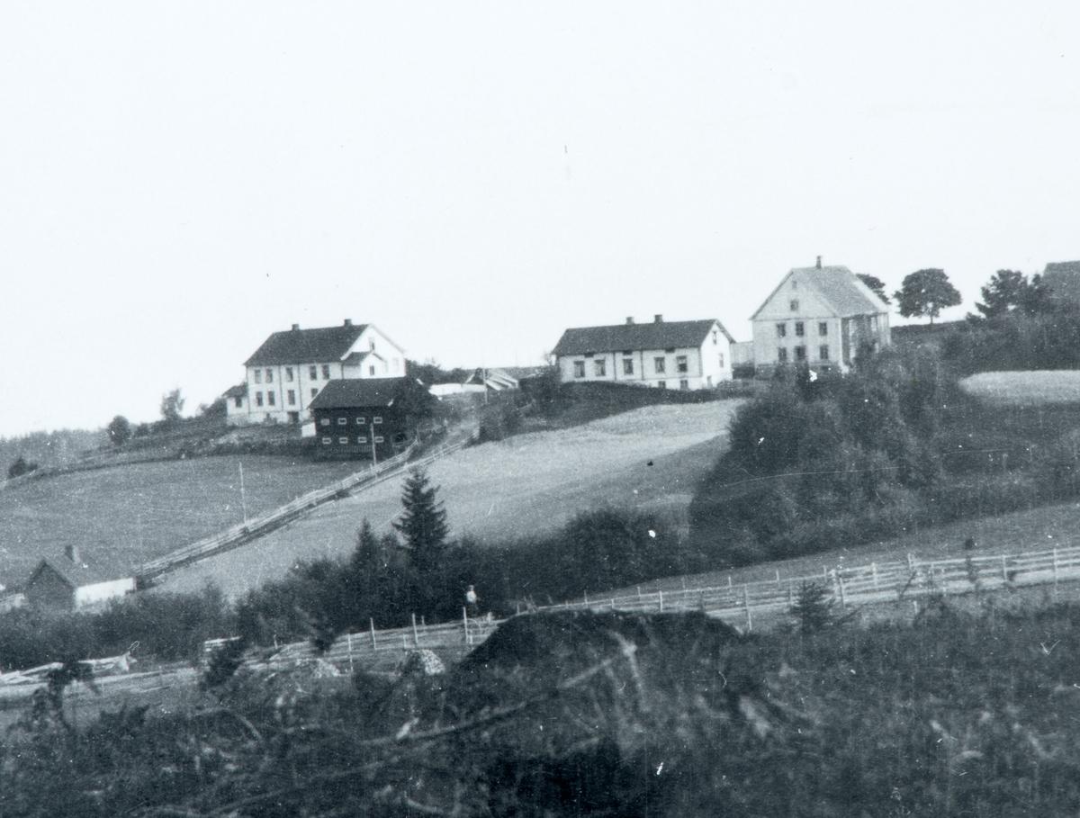 Baldishol gard, Nes H. Landskap.