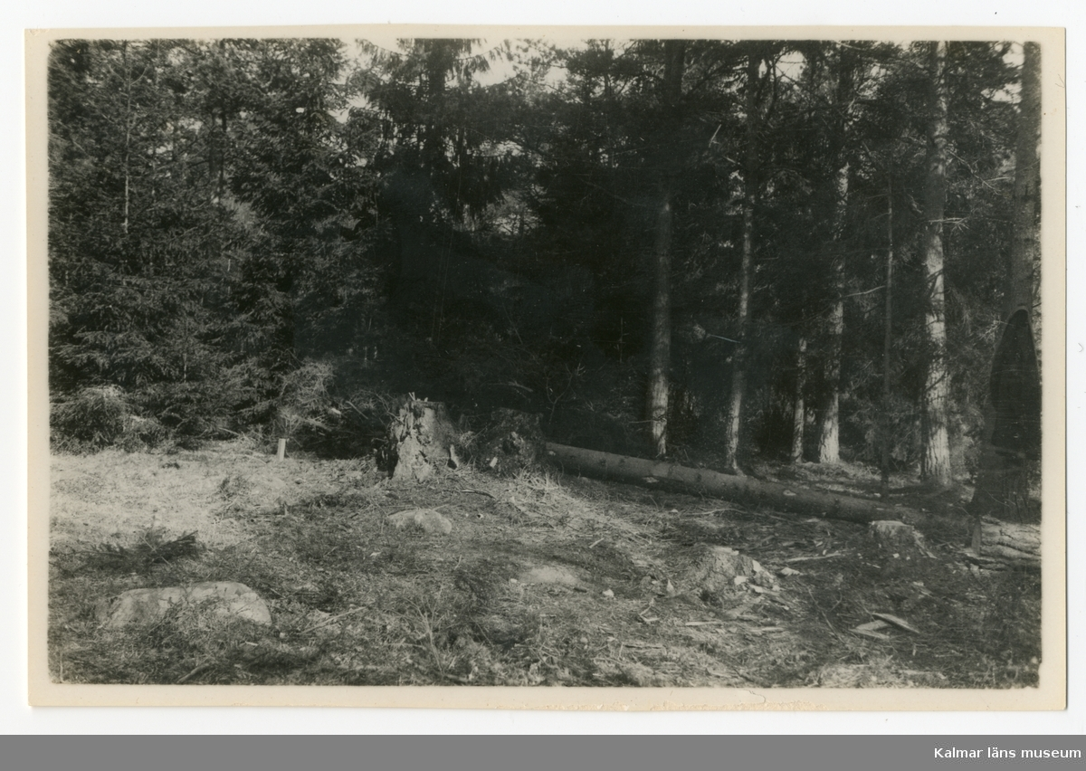 Grunden läggs till Vänvik 1930.
