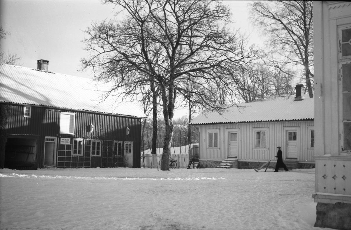 Langsæ gård, tunområdet, sett fra nordre hjørne av tunet. Hjørnet av våningshuset til høyre, drengestua bak til høyre og uthuset sees bak t.v. Tuntreet sentralt i bidlet.