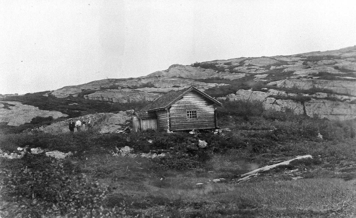 Åmlibilder samlet av Åmli historielag Vestsida Hægestøyl