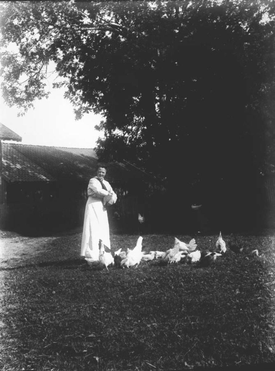 Sigrid Østby mater høns.