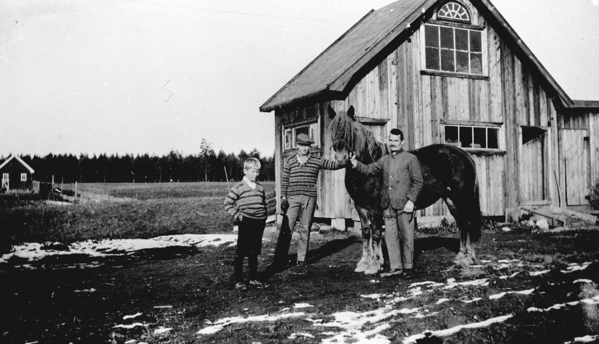Fra v. Ivar Kværner,Sverre Kværner,Kristian Kværner.Hesten Raua