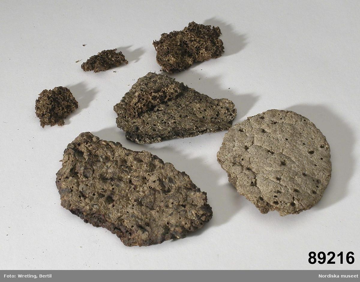 """Huvudliggaren: """"6 nödbrödsprof. a-c och f förstörda av mask, d-e ej anträffade 1950 / Bj.H.  Katalogkort: """"Nödbröd, 6 st. a) 'Nödbröd af näckrosrötter med rågmjöl genom jäsning beredt bröd' - Förstört av mask BJ. H. 1952 b) 'Nödbröd bestående af från bäska befriad islandsmossa omaldt - kokt med vatten halftimmas tid - till en tjock gröt under omröring deri inmängdt höst 1/4 à 1/2 del rågmjöl, med lite salt och kummin, och utan jäsning beredt till bröd.' - Förstört av mask BJ. H. 1952 c) 'Nödbröd bestående af: Rönnbär sönderbultade med trädklubba i trädlåda till en gröt och Rågmjöl ungefär 1/4 del. utan jäsning bakadt och gräddadt till bröd.' - Förstört av mask BJ. H. 1952 f) 'Nödbröd bestående af: från bäska befriad Granla [granlav?] och Rågmjöl - lika delar samt lite salt och kummin genom jäsning beredt till bröd.' - Förstört av mask BJ. H. 1952"""