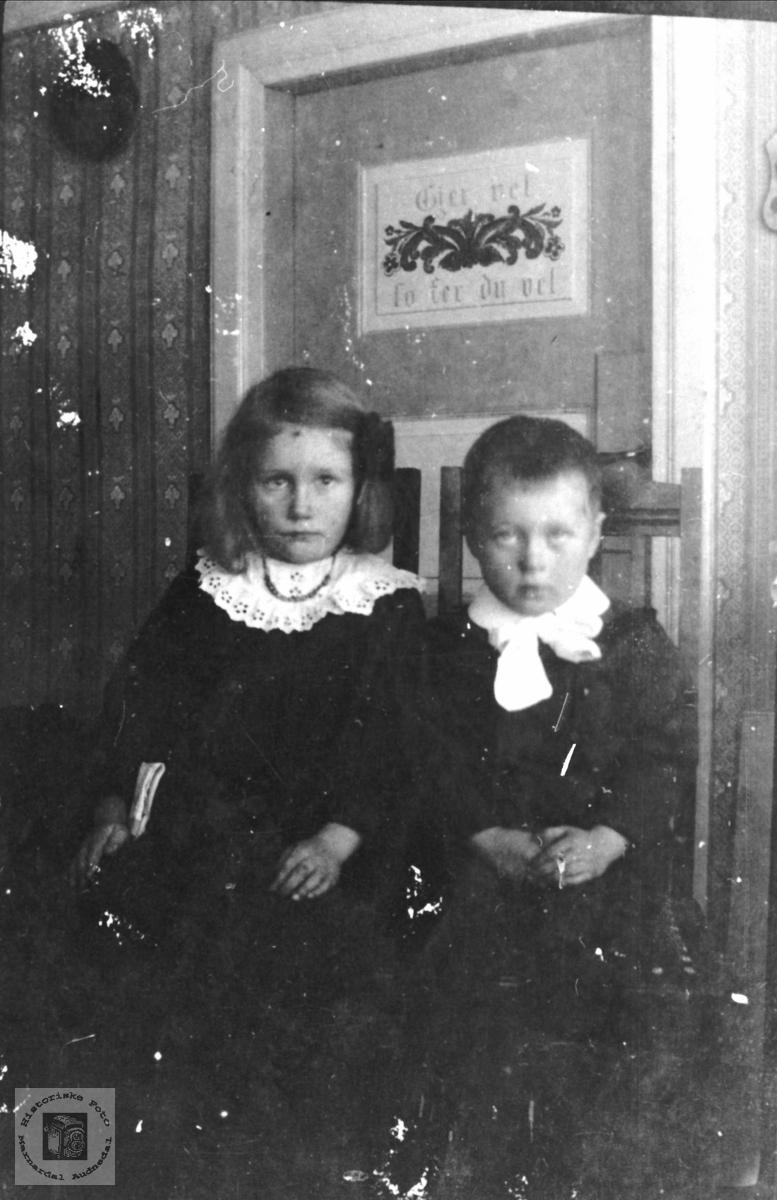 Dobbeltportrett av Olga og Knut Trygve Skaar, Øyslebø.