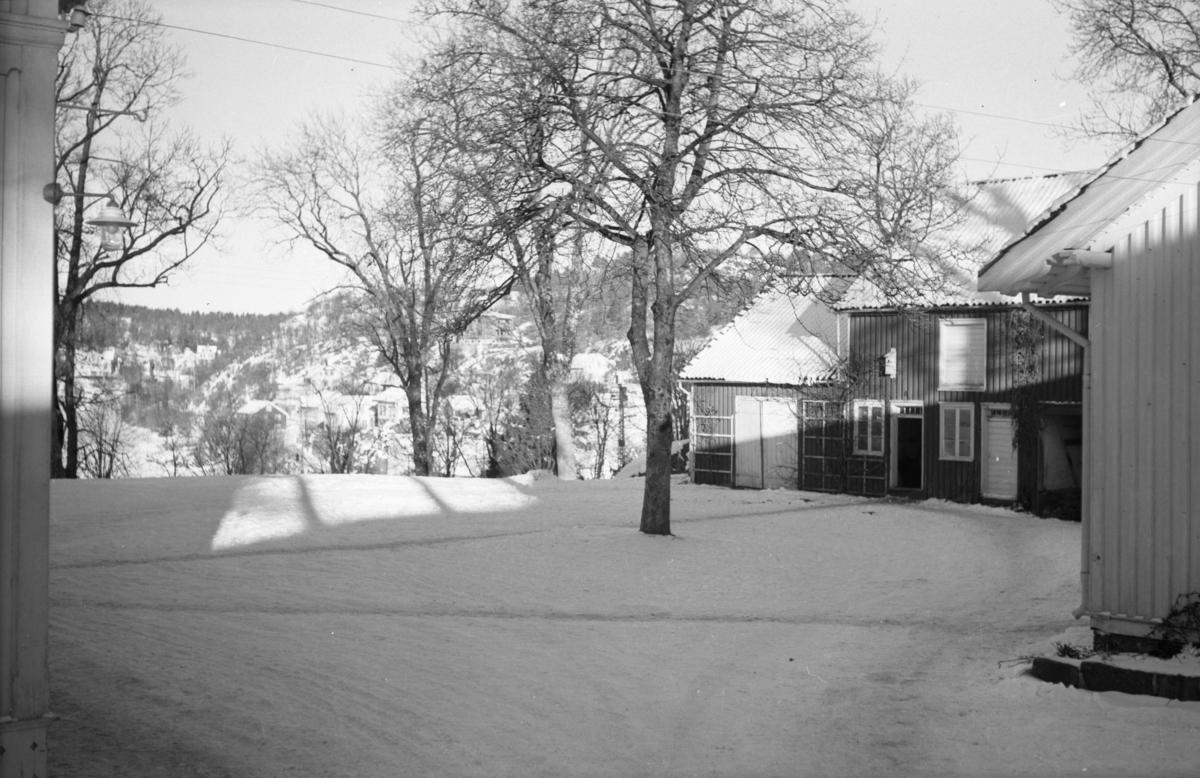 Langsæ gård, tunområdet, sett fra innkjøringen til tunet. Hjørnet av våningshuset til venstre, hjørnet av drengestua til høyre. Uthuset sees bak t.h. Tuntreet sentralt i bidlet.