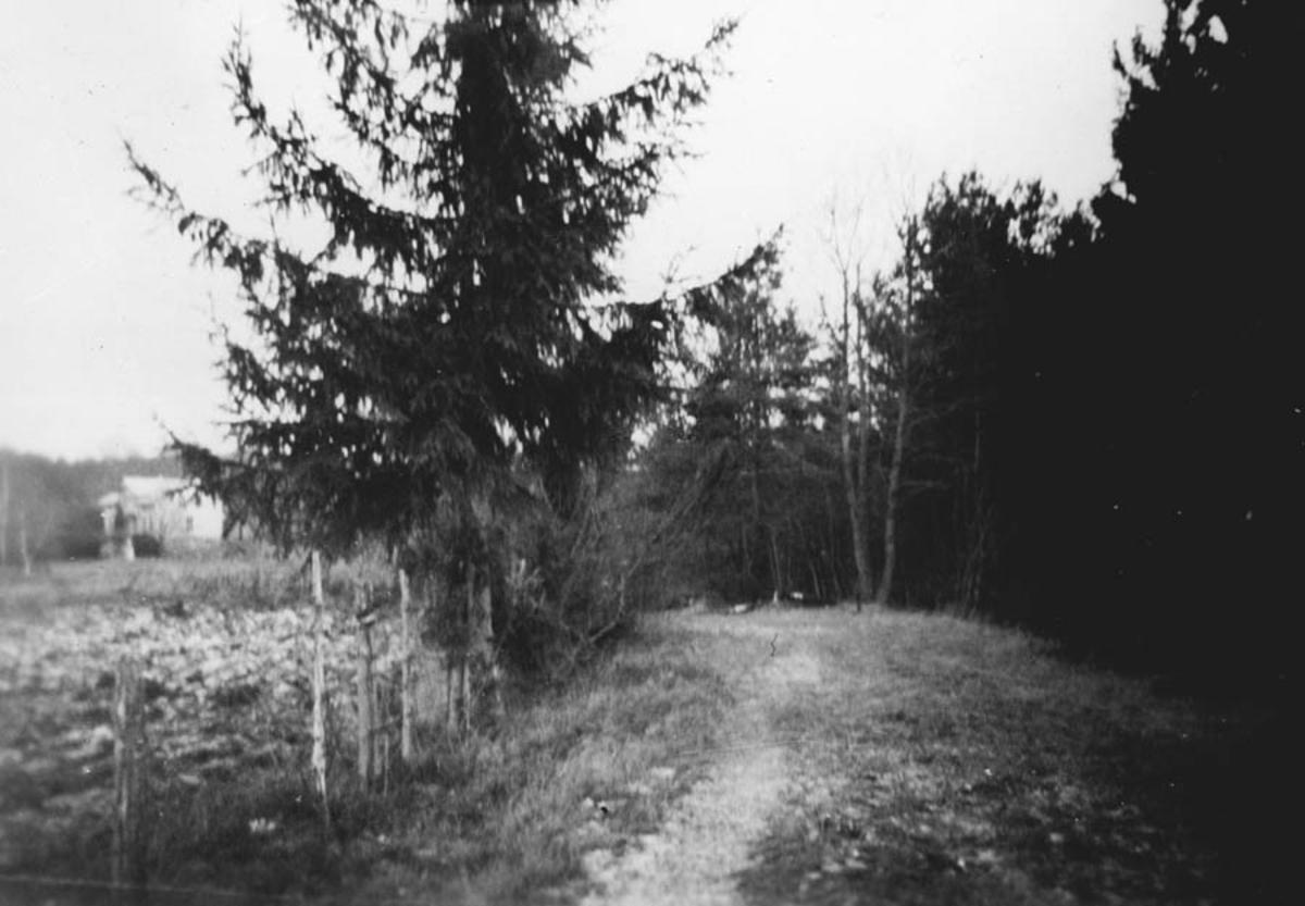 Fra den gamle Kråkstadveien over Prestehagan.